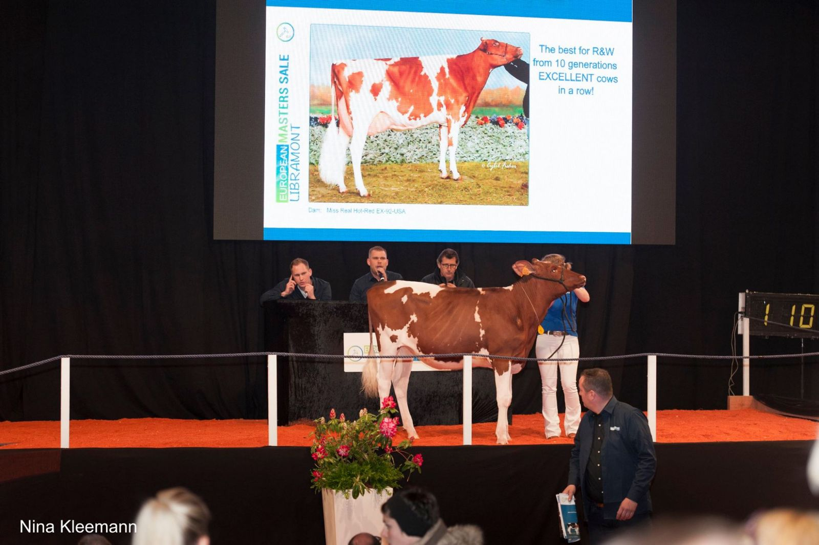 Show and Sale Recap :: The Bullvine - The Dairy Information