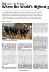 Article Holstein International 02/15 Page 1
