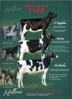 Advertisement Hullcrest Holsteins