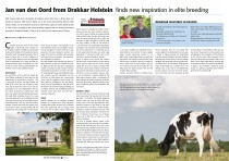Drakkar Holstein article HI
