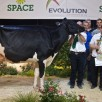 Dijs Lauria - Res. Grand Champion SPACE '14