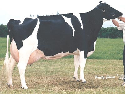 Markwell Luke Rapture EX-92-USA 3E GMD DOM