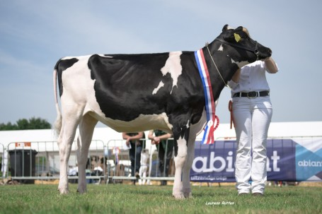 I-Cow Aurora winning the show in Beilen