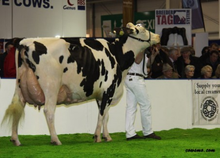 Wyndford Goldwyn Erle EX-93-UK