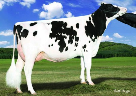 Larcrest Crimson EX-93-USA