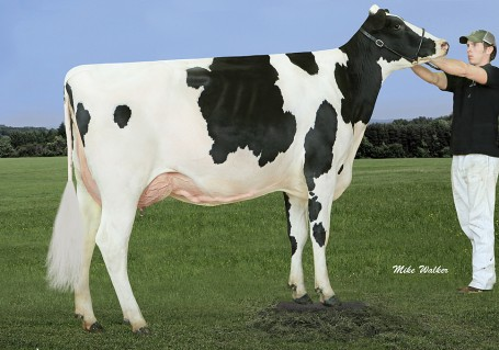 Coyne-Farms Mogul Mia VG-87