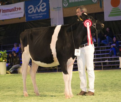 Daughter: Vina AM Beemer Carly  | Res. Jr. Champion Libramont '17