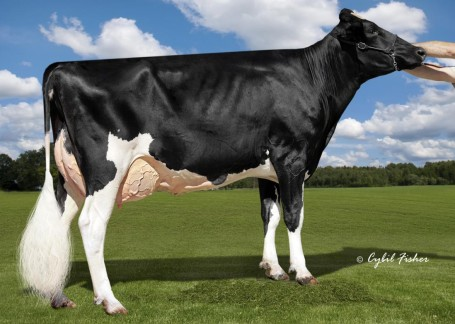 Cookiecutter Ssire Has VG-87 EX-MS