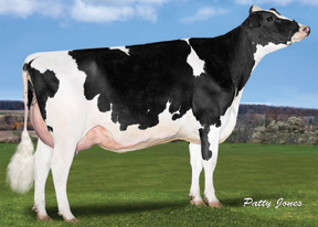 RI-VAL-RE MAIN ELECTRA VG-86-2YR-CAN