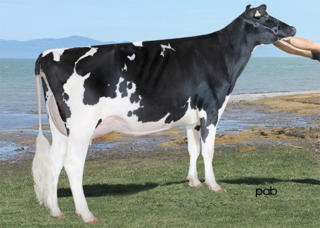 Wabash-Way-I Shottle Ember VG-88