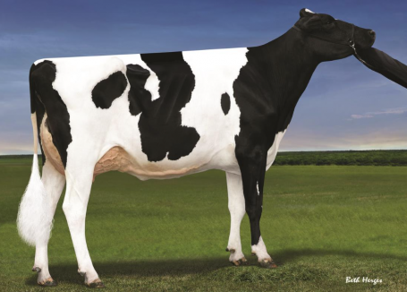 Oh-River-Syc Mogal Brylan VG-85-USA