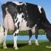 4th dam: Regancrest S Celebrity EX-94-CAN 20*
