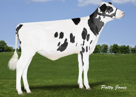 Comfort Modesty Freespirit VG-85