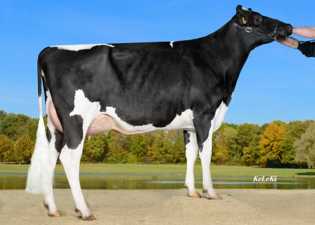 Grand dam: Wilder Meggy VG-86-DE