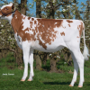 Batouwe Salsa Aiko-Red | #6 GTPI R&W heifer in Europe